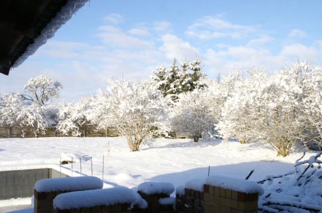 Gartenansicht ( Winter )